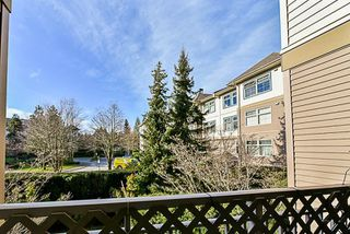 Photo 20: 217 15210 GUILDFORD DRIVE in Surrey: Guildford Condo for sale (North Surrey)  : MLS®# R2232822