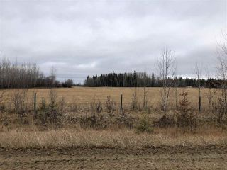 Photo 1: 20044 TWP RD 661: Rural Lesser Slave River M.D. Rural Land/Vacant Lot for sale : MLS®# E4134948