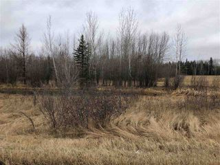 Photo 2: 20044 TWP RD 661: Rural Lesser Slave River M.D. Rural Land/Vacant Lot for sale : MLS®# E4134948