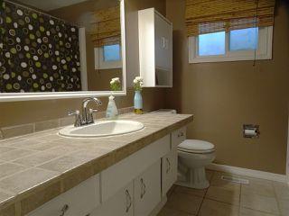 Photo 8: 7103 43 Avenue in Edmonton: Zone 29 House for sale : MLS®# E4139946
