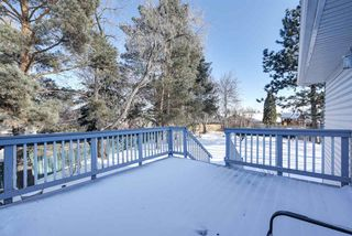 Photo 26: 18611 68 Avenue in Edmonton: Zone 20 House for sale : MLS®# E4145806