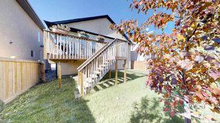 Photo 29: 805 WILDWOOD Crescent in Edmonton: Zone 30 House for sale : MLS®# E4154513