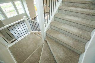 Photo 15: 7939 ERASMUS Crescent in Edmonton: Zone 57 House for sale : MLS®# E4160995
