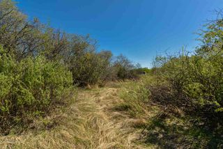 Photo 8: 63 53521 RGE RD 272: Rural Parkland County Rural Land/Vacant Lot for sale : MLS®# E4178691