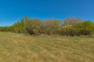 Photo 5: 63 53521 RGE RD 272: Rural Parkland County Rural Land/Vacant Lot for sale : MLS®# E4178691
