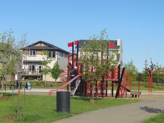 Photo 12: 9919 222 Street in Edmonton: Zone 58 House for sale : MLS®# E4179866