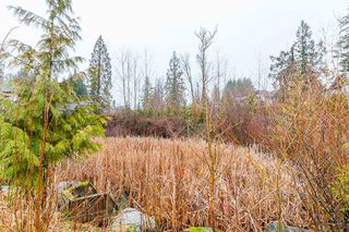 "Photo 18: 13492 229 Loop in Maple Ridge: Silver Valley Condo for sale in ""HAMPSTEAD"" : MLS®# R2434504"