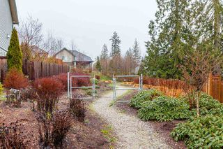 "Photo 19: 13492 229 Loop in Maple Ridge: Silver Valley Condo for sale in ""HAMPSTEAD"" : MLS®# R2434504"