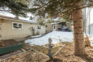 Photo 20: 13304 109 Avenue NW in Edmonton: House for sale : MLS®# E4190306
