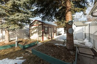 Photo 18: 13304 109 Avenue NW in Edmonton: House for sale : MLS®# E4190306