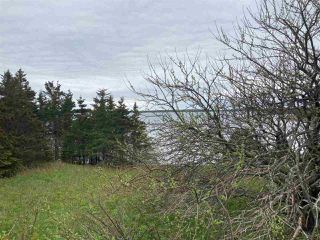 Photo 2: 1455 Highway 7 in Marie Joseph: 303-Guysborough County Vacant Land for sale (Highland Region)  : MLS®# 202010344