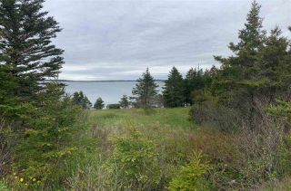 Photo 9: 1455 Highway 7 in Marie Joseph: 303-Guysborough County Vacant Land for sale (Highland Region)  : MLS®# 202010344