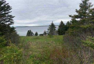 Photo 11: 1455 Highway 7 in Marie Joseph: 303-Guysborough County Vacant Land for sale (Highland Region)  : MLS®# 202010344