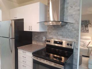 Photo 6: 8 11255 31 Avenue NW in Edmonton: Zone 16 Condo for sale : MLS®# E4206507
