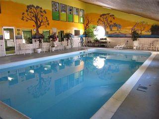 Photo 19: 8 11255 31 Avenue NW in Edmonton: Zone 16 Condo for sale : MLS®# E4206507