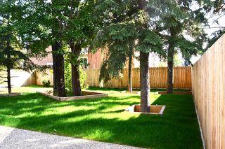 Photo 41: 10943 54 Avenue in Edmonton: Zone 15 House for sale : MLS®# E4214986
