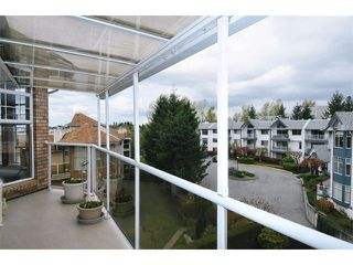 "Photo 16: 308 22611 116TH Avenue in Maple Ridge: East Central Condo for sale in ""ROSEWOOD COURT"" : MLS®# V1058553"