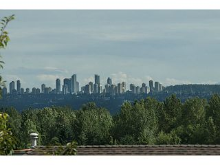 Photo 20: 716 E 29TH Street in North Vancouver: Princess Park House for sale : MLS®# V1136834