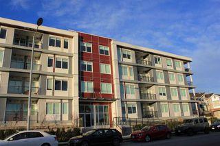Main Photo: 308 10011 RIVER DRIVE in Richmond: Bridgeport RI Home for sale ()  : MLS®# R2044689