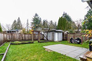 Photo 19: 21589 CHERRINGTON Avenue in Maple Ridge: West Central House for sale : MLS®# R2123882