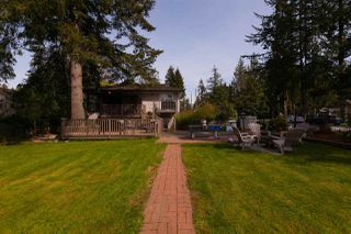 Photo 20: 19707 46 Avenue in Langley: Langley City House for sale : MLS®# R2261410