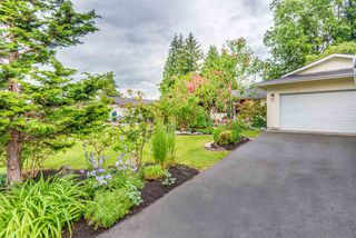 Photo 19: 12120 DOVER Street in Maple Ridge: West Central House for sale : MLS®# R2281693
