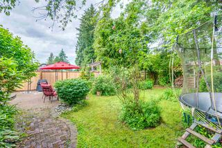 Photo 16: 12120 DOVER Street in Maple Ridge: West Central House for sale : MLS®# R2281693