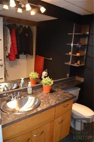 Photo 14: 223 Lynn Lake Drive in Winnipeg: Lakeside Meadows Residential for sale (3K)  : MLS®# 1822208