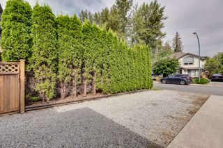 Photo 51: 23890 118A Avenue in Maple Ridge: Cottonwood MR House for sale : MLS®# R2303830