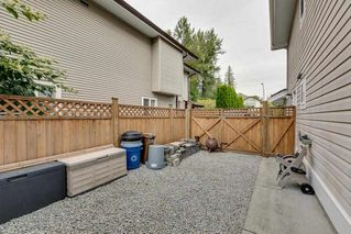 Photo 15: 23890 118A Avenue in Maple Ridge: Cottonwood MR House for sale : MLS®# R2303830