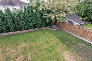Photo 9: 23890 118A Avenue in Maple Ridge: Cottonwood MR House for sale : MLS®# R2303830