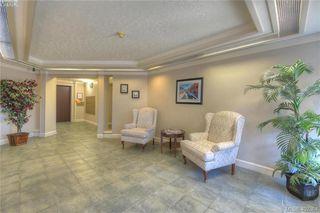 Photo 5: 305 1436 Harrison St in VICTORIA: Vi Downtown Condo Apartment for sale (Victoria)  : MLS®# 802909
