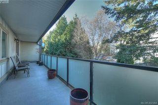 Photo 23: 305 1436 Harrison St in VICTORIA: Vi Downtown Condo Apartment for sale (Victoria)  : MLS®# 802909