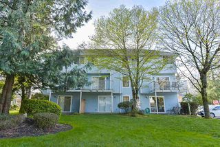 Photo 20: 17 8250 121A Street in Surrey: Queen Mary Park Surrey Townhouse for sale : MLS®# R2356301