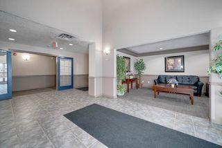 Photo 3: 238 16311 95 Street in Edmonton: Zone 28 Condo for sale : MLS®# E4169776