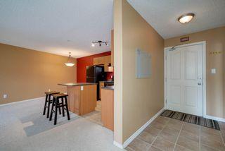 Photo 23: 238 16311 95 Street in Edmonton: Zone 28 Condo for sale : MLS®# E4169776