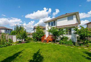 Photo 49: 11435 15 Avenue in Edmonton: Zone 55 House for sale : MLS®# E4191960