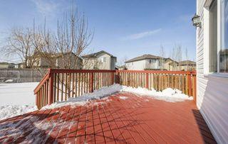 Photo 40: 11435 15 Avenue in Edmonton: Zone 55 House for sale : MLS®# E4191960