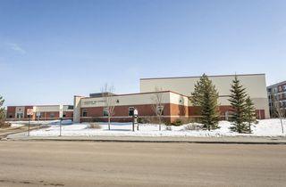 Photo 45: 11435 15 Avenue in Edmonton: Zone 55 House for sale : MLS®# E4191960