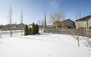 Photo 41: 11435 15 Avenue in Edmonton: Zone 55 House for sale : MLS®# E4191960