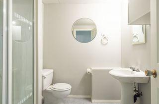 Photo 37: 976 Wallbridge Place NW in Edmonton: Zone 22 House for sale : MLS®# E4197060