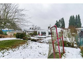 Photo 11: 1121 HAMMOND Avenue in Coquitlam: Maillardville House for sale : MLS®# R2473525