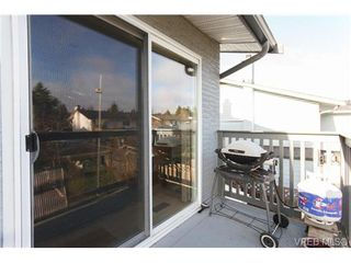 Photo 19: 4377 Columbia Dr in VICTORIA: SE Gordon Head House for sale (Saanich East)  : MLS®# 659753