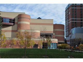 Photo 25: 301D 500 EAU CLAIRE Avenue SW in Calgary: Eau Claire Condo for sale : MLS®# C4043747