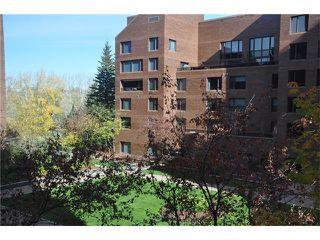 Photo 23: 301D 500 EAU CLAIRE Avenue SW in Calgary: Eau Claire Condo for sale : MLS®# C4043747