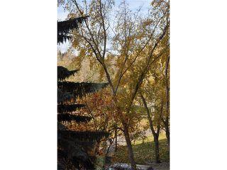 Photo 21: 301D 500 EAU CLAIRE Avenue SW in Calgary: Eau Claire Condo for sale : MLS®# C4043747