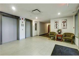 Photo 33: 313 1414 17 Street SE in Calgary: Inglewood Condo for sale : MLS®# C4063420