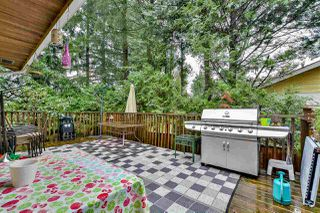 Photo 16: 21436 117 Avenue in Maple Ridge: West Central House for sale : MLS®# R2139746