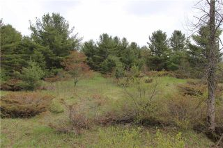 Photo 7: Lt 22 Maritime Road in Kawartha Lakes: Rural Bexley Property for sale : MLS®# X3793246
