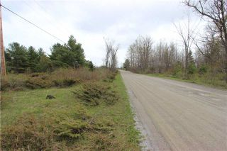 Photo 5: Lt 22 Maritime Road in Kawartha Lakes: Rural Bexley Property for sale : MLS®# X3793246